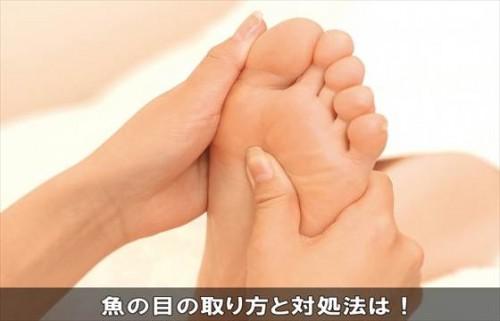 uonometaishohou4-1