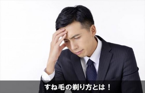 sunegesorikata12-1